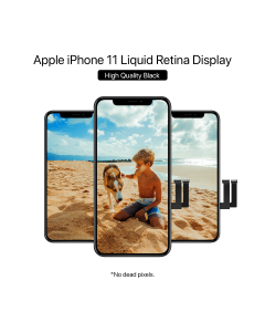 iPhone 11 In-Cell 2GR LCD Display High Quality